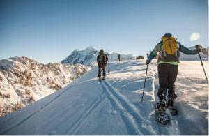 randonnée en raquettes à la montagne
